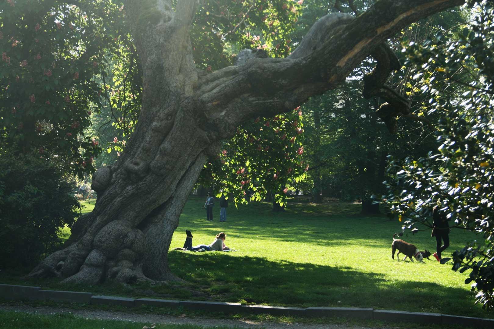 Giardini della Guastalla