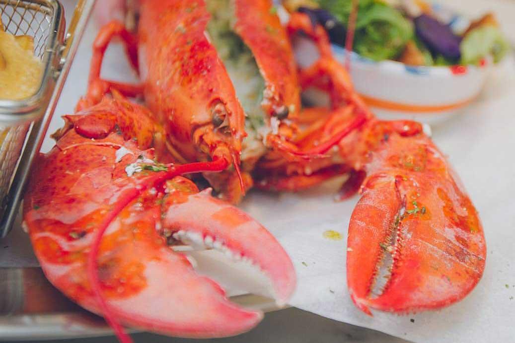Corallo Lobster Bar | Astice