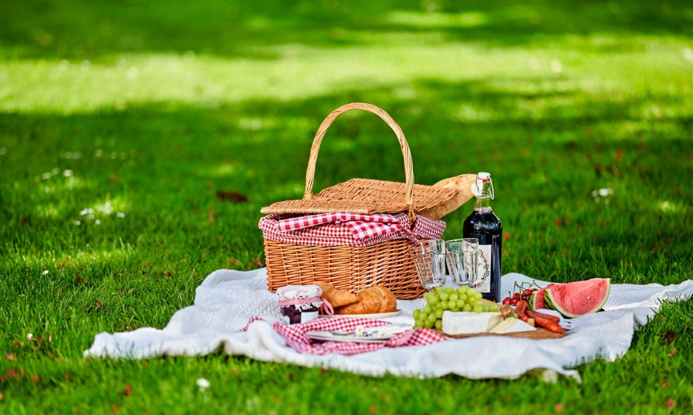 The best places to picnic in Milan