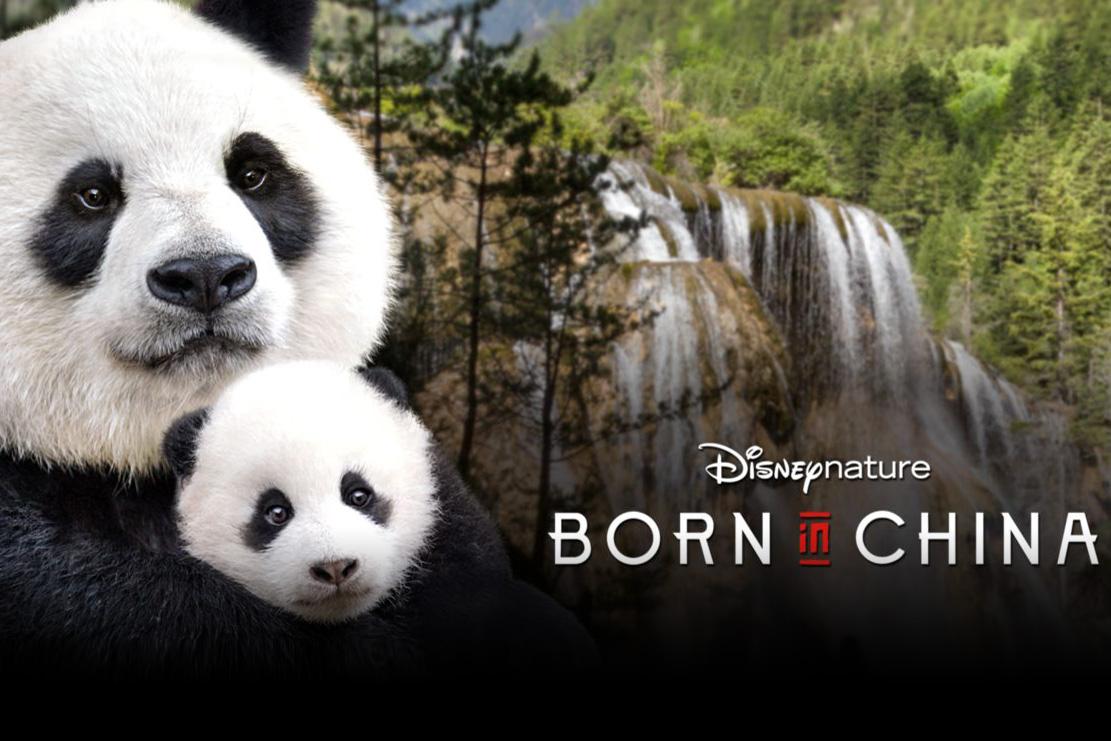 I Migliori Documentari da vedere su Disney+